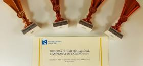 Premios del campeonato